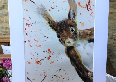 'Red Squirrel' print