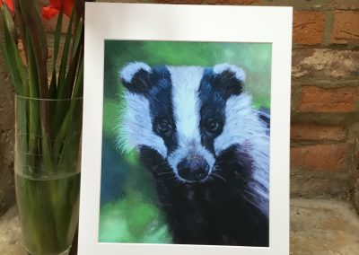 'Young Badger' print